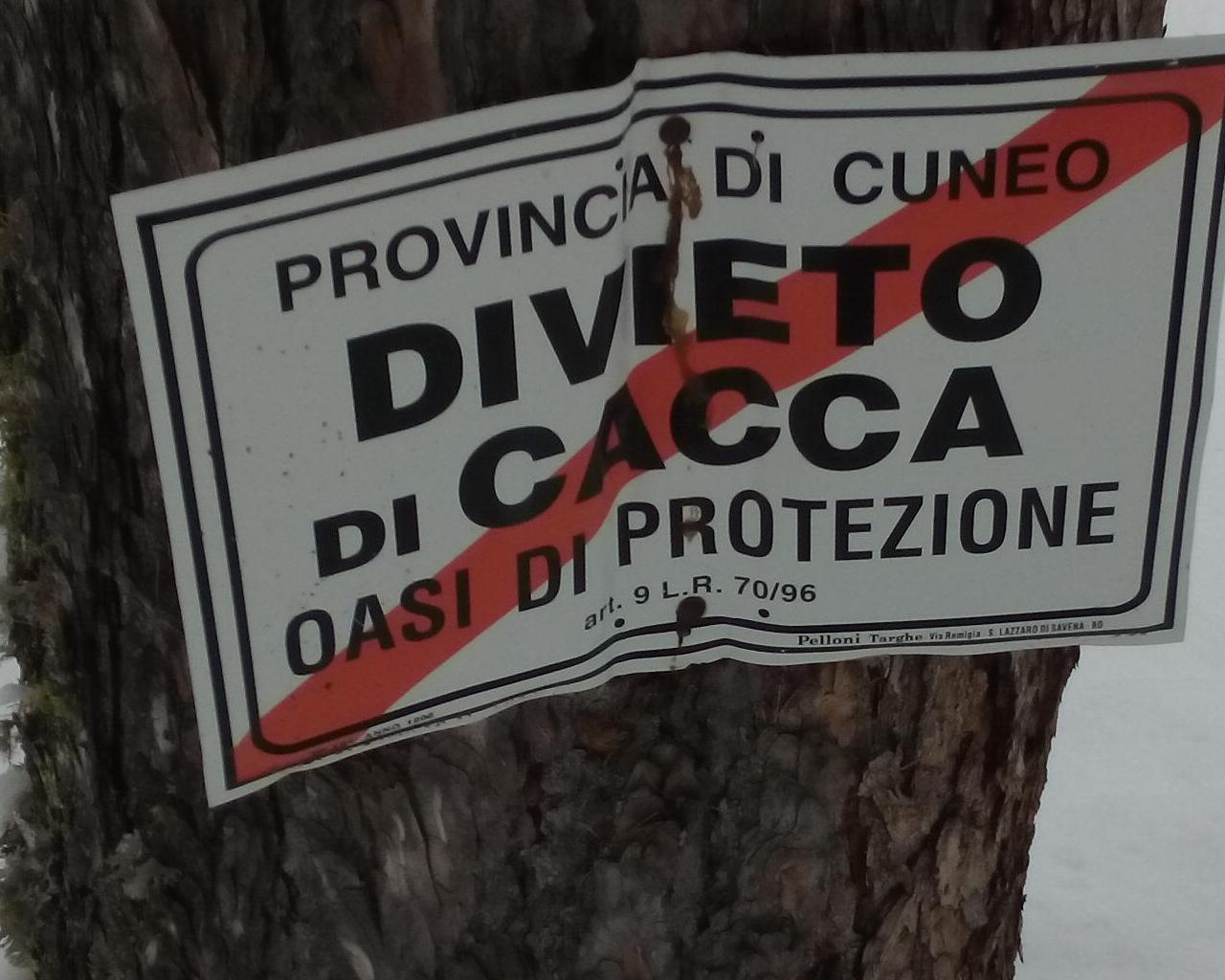 DivietoDiCacca.JPG